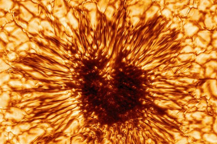 Sunspot, in detail