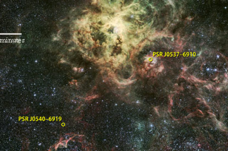 Tarantula Nebula pulsars