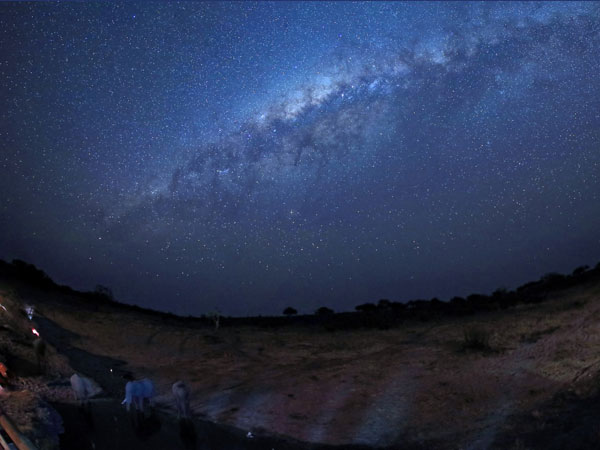 The Milky Way over Savute watering hole