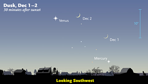 Venus and Mercury in early December