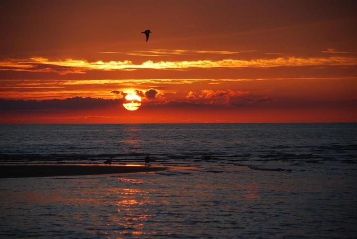 sunset by M. I. Steig